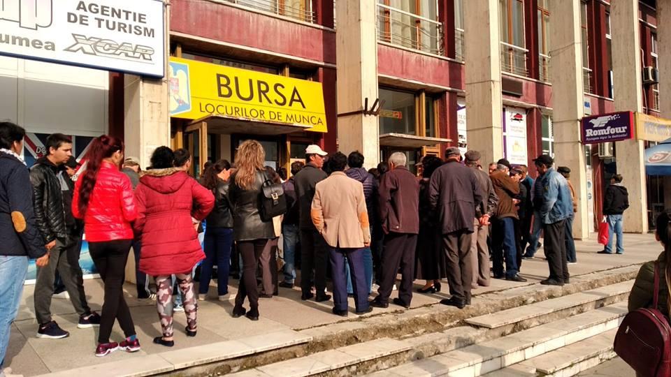 311 persoane şi-au găsit un loc de muncă cu sprijinul AJOFM Tulcea